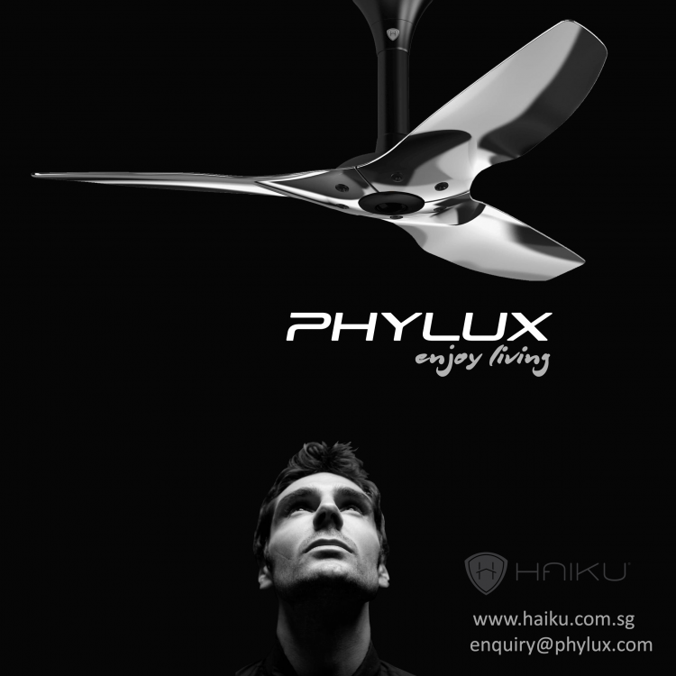 PHYLUX - Haiku Alum Look Up.png