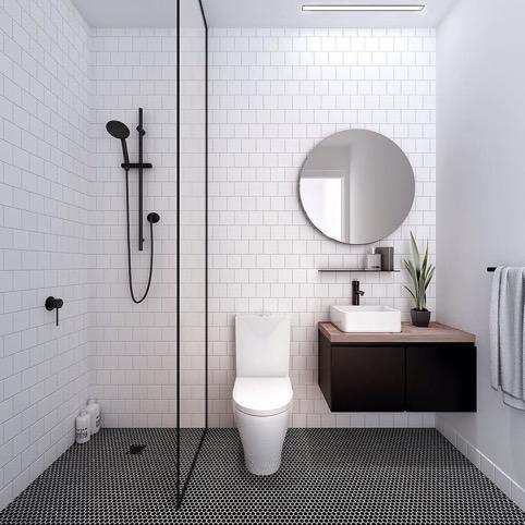59462602d1a11_Toilet2.jpg.444b573ea9d6aba4eb8982778624c352.jpg