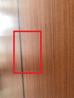 Door3.JPG.a0e3c19875680898ca8e882a1101fdf0.JPG