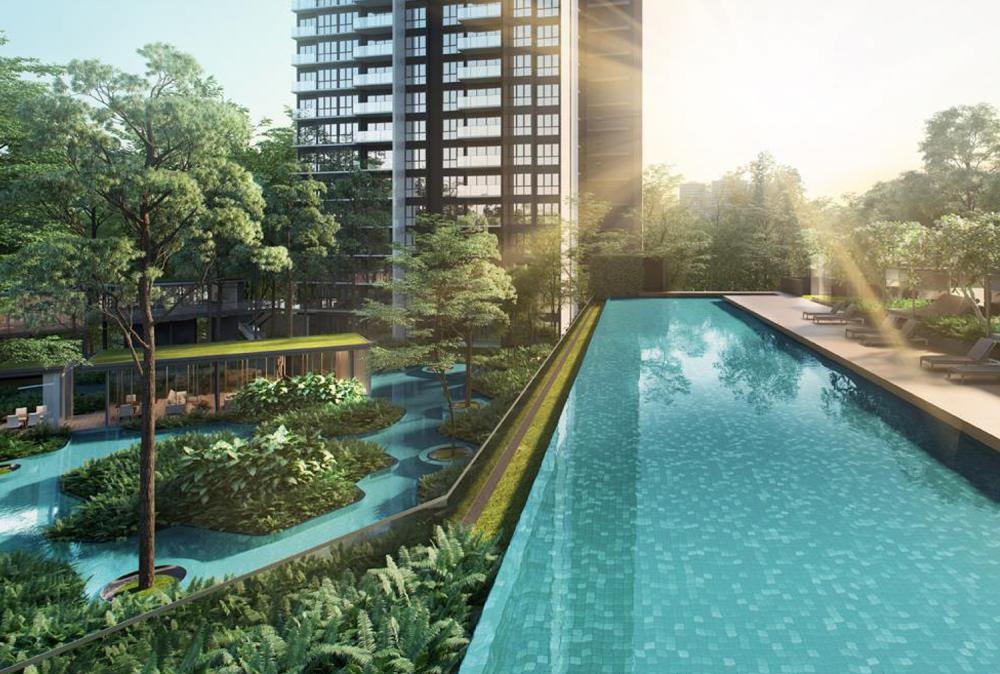 The-Clement-Canopy Pool.jpg