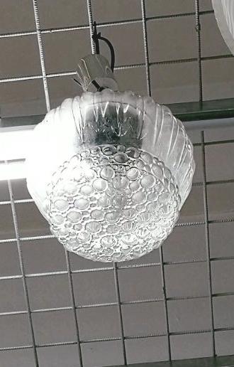 Italy glass pendant lamp $85.jpg