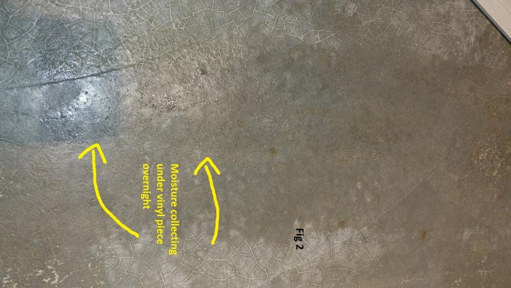 fig2.jpg.c15282b6c312450b15bc5319c711afab.jpg