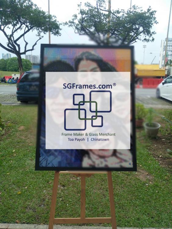SGFrames.com Lego Framing 002.jpg