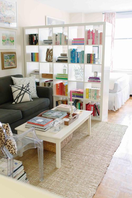 divide-studio-apartment-with-ikea-bookshelf-3334-1.jpg.292dfaeb248445935c07bea9706d2aa0.jpg
