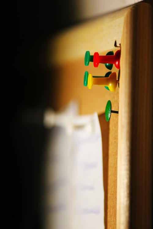 pin on cork board.jpg