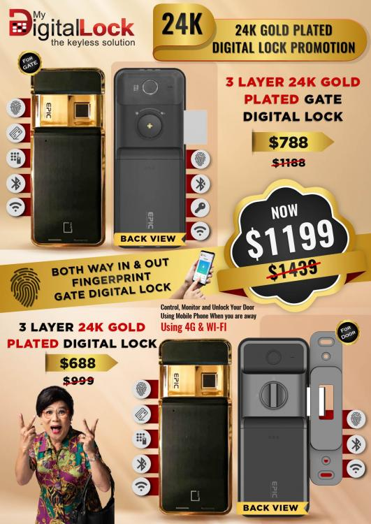 24K-Gold-Plated-Gate-and-Door-Digital-Lock-Promotions-1.jpg