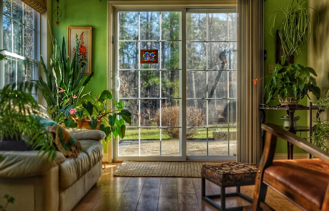 A living room with many house plants and windows