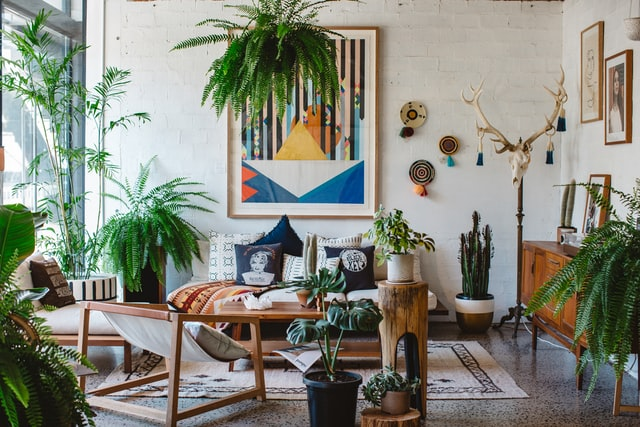 A bright living room with a lot of house plants and wall art