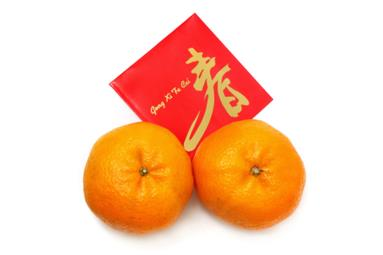 image for Yusheng Idioms and more Chinese New Year Favourites